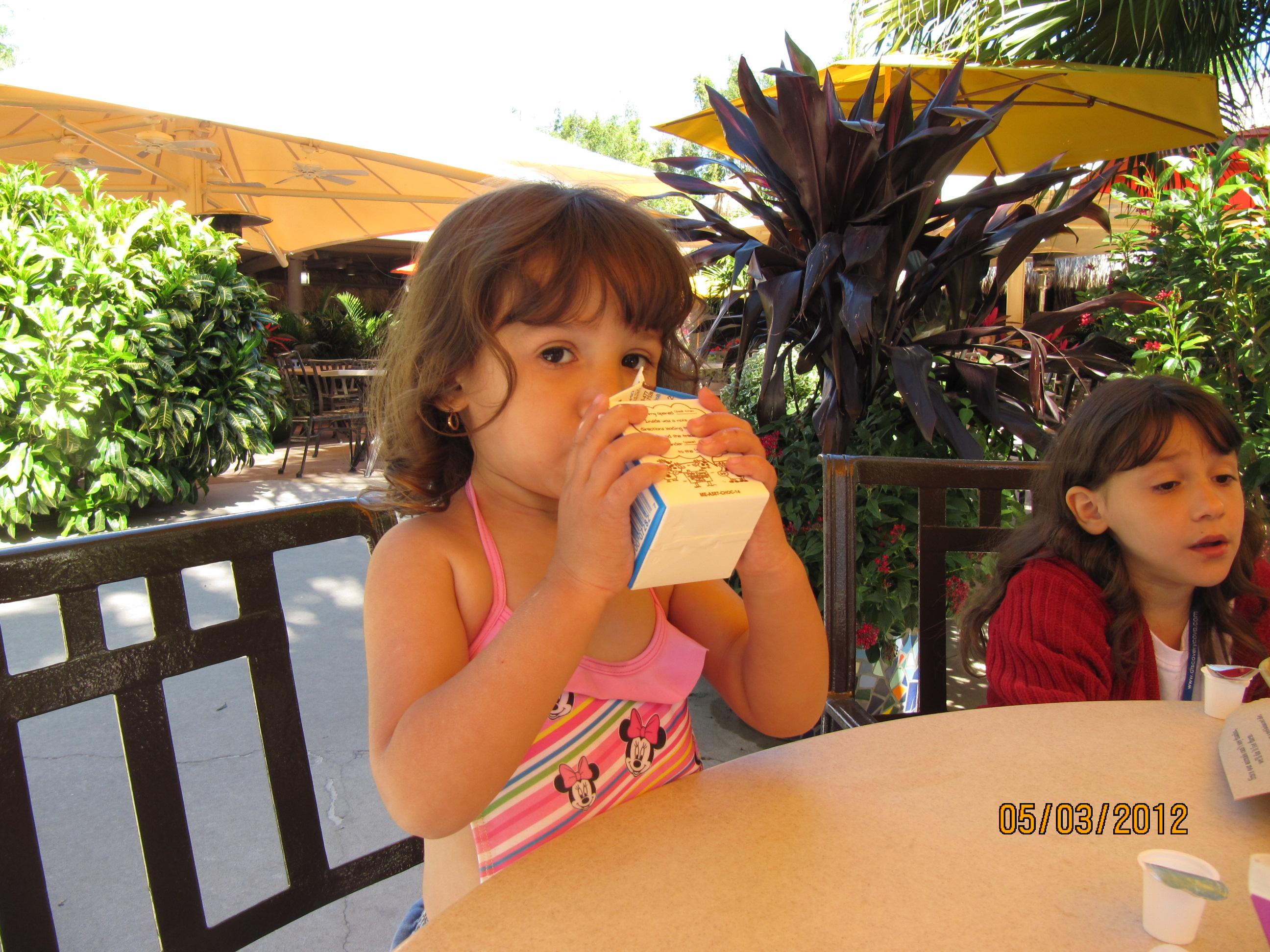 Discovery Cove - café da manhã