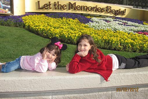Disney World: onde os sonhos se tornam realidade!
