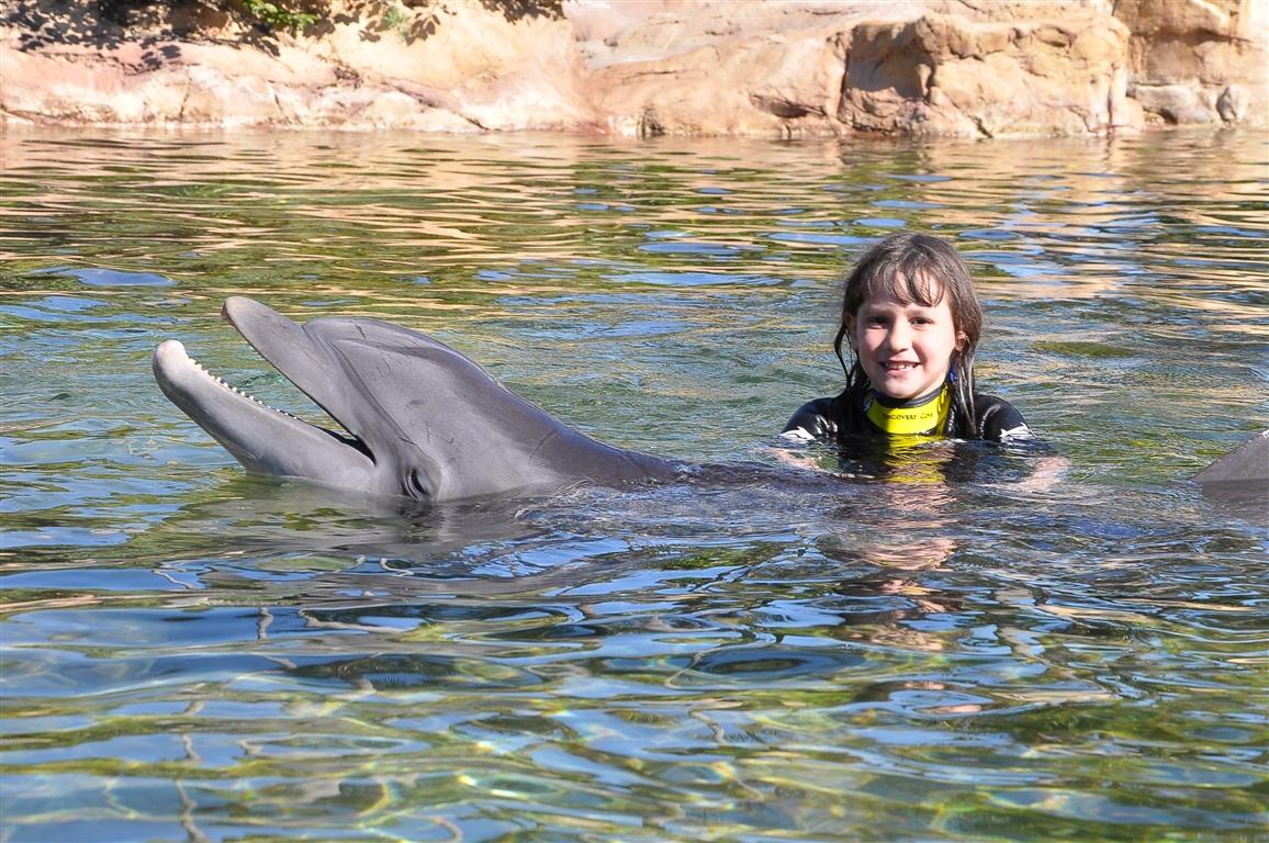 Posando com o golfinho